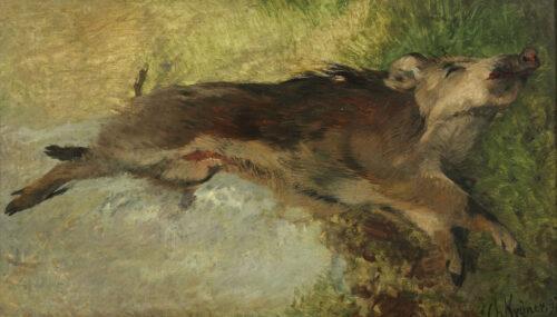 Christian Johann Kroner - Wild zwijn