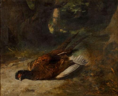 Hollandse School - Een fazant