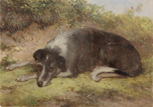 Ary Johannes Lamme -  Dog