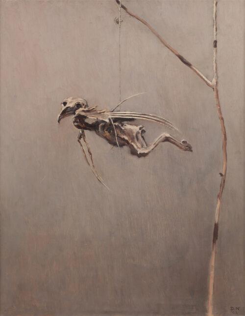 Dirk Nijland - Hanging bird skeleton
