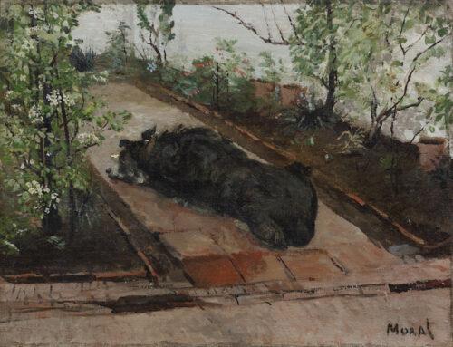 Henri August Alban Moral-Dog resting in a garden