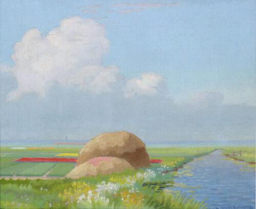 Dirk Smorenberg-Bulb-fields