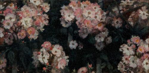 Jacobus van Looy-Bunch roses
